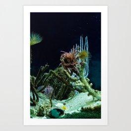 Sea Bed #1 Art Print