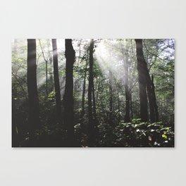 Yokun Ridge III Canvas Print
