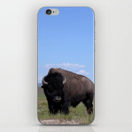 King of the Plains iPhone Skin