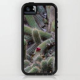 Cactus tangle iPhone Case