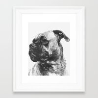 boxer Framed Art Prints featuring Boxer by onlypencil