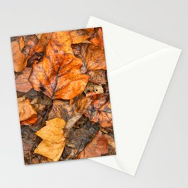 Drowning Autumn Decay Stationery Cards