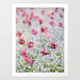 Field of Purple Flowers Art Print