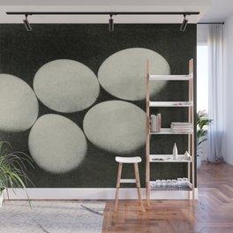 Vintage Photograph, Eggs Wall Mural