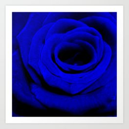 Expansion Blue rose flower Art Print