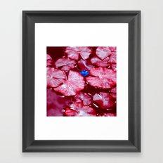 blue frog VI Framed Art Print