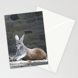 Philadelphia Zoo Series 36 Stationery Cards