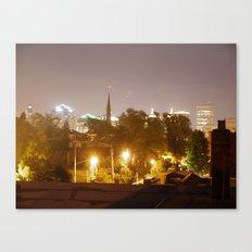 Buffalo Exposed Canvas Print