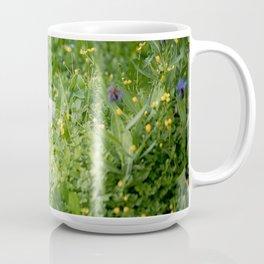 Baby Swans in the Meadow Coffee Mug