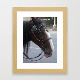 Carriage Horse #2 Framed Art Print
