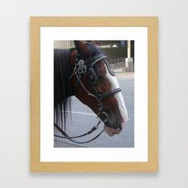 Carriage Horse #2 Framed Art Print