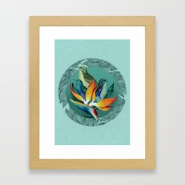 PARADISE BIRDS Framed Art Print