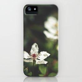 Sweet, Sweet Lies iPhone Case