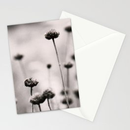 3, 2, 1 Stationery Cards