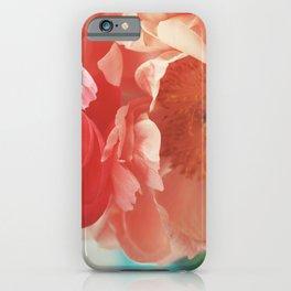 Paeonia #4 iPhone Case