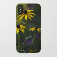 daisies iPhone & iPod Cases featuring Daisies by Christina Rollo