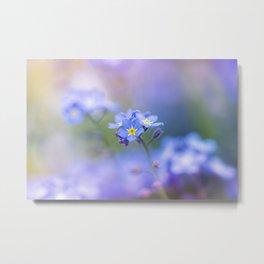 Forget-Me-Not Flower Metal Print