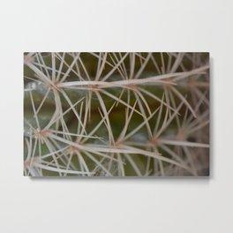 Deceiving Cactus Metal Print