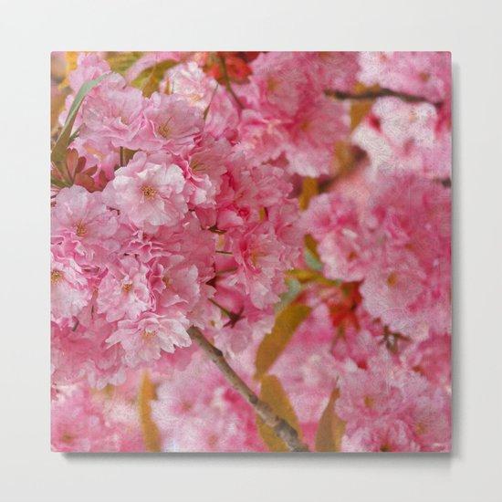 Cherry blossom #4 Metal Print