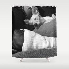 Dog by Brynn Stephens Shower Curtain