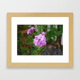 Blomst Framed Art Print