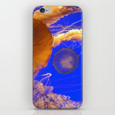 Amazing Jellyfish iPhone & iPod Skin