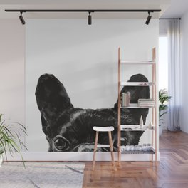 Peeking French Bulldog Wall Mural