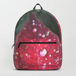 Raindrops on a poinsettia Christmas flower Backpack