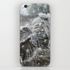 Ice cold beauty iPhone & iPod Skin