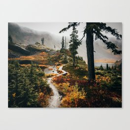Pacific Northwest Forest Trail Canvas Print