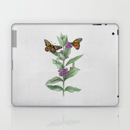 Monarch Butterfly Life Cycle Laptop & iPad Skin