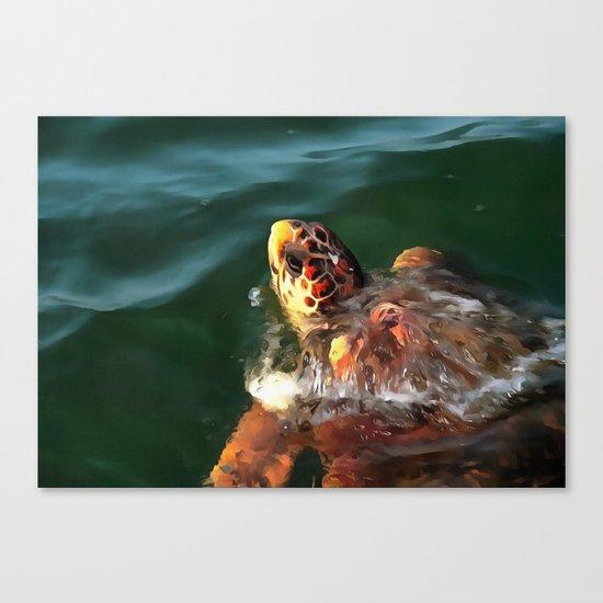 Loggerhead Turtle Canvas Print