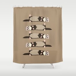 ferrets Shower Curtain