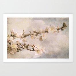 Almendro en flor Art Print