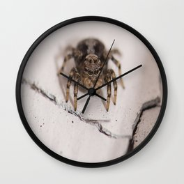Stalking prey Wall Clock