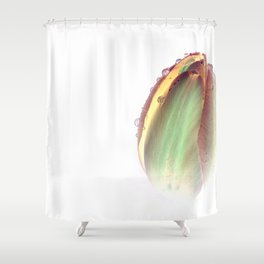 Dew Inversion Shower Curtain