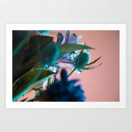 Flowers/Amnesia Art Print
