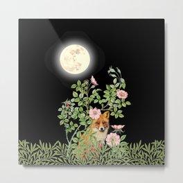 Night Fox Under Wild Rose Metal Print