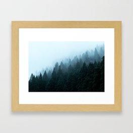 Japanese Forest Framed Art Print