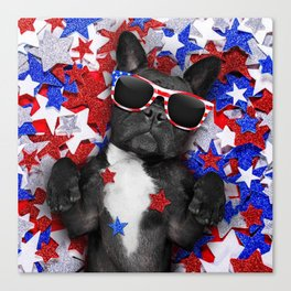 USA DOG Canvas Print