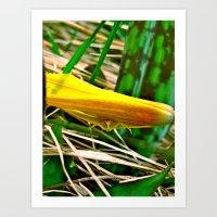 Yellow Spider Art Print