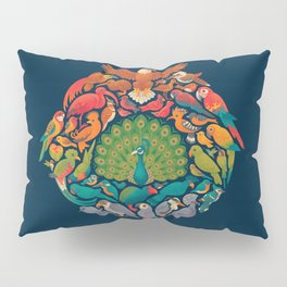 Aerial Rainbow Pillow Sham