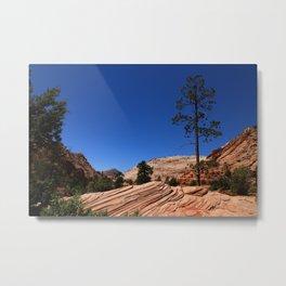 Zion Park Colors and Texture Metal Print