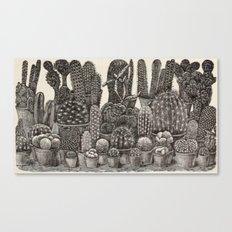 Vintage Cacti & Succulents Canvas Print