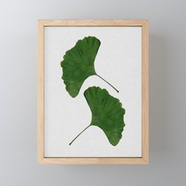 Ginkgo Leaf II Framed Mini Art Print