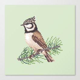 Bird 3 Canvas Print