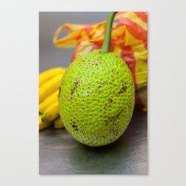 Guanabana or Soursop Canvas Print