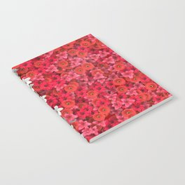 Boundary Flowers Notebook