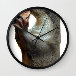Smooth Coated Otter Eating Fish Wall Clock