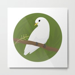 Yellow-billed Cotinga Metal Print